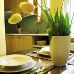golden-stars-dream-budapest-apartments-kitchen-2