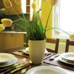 golden-stars-dream-budapest-apartments-kitchen-3